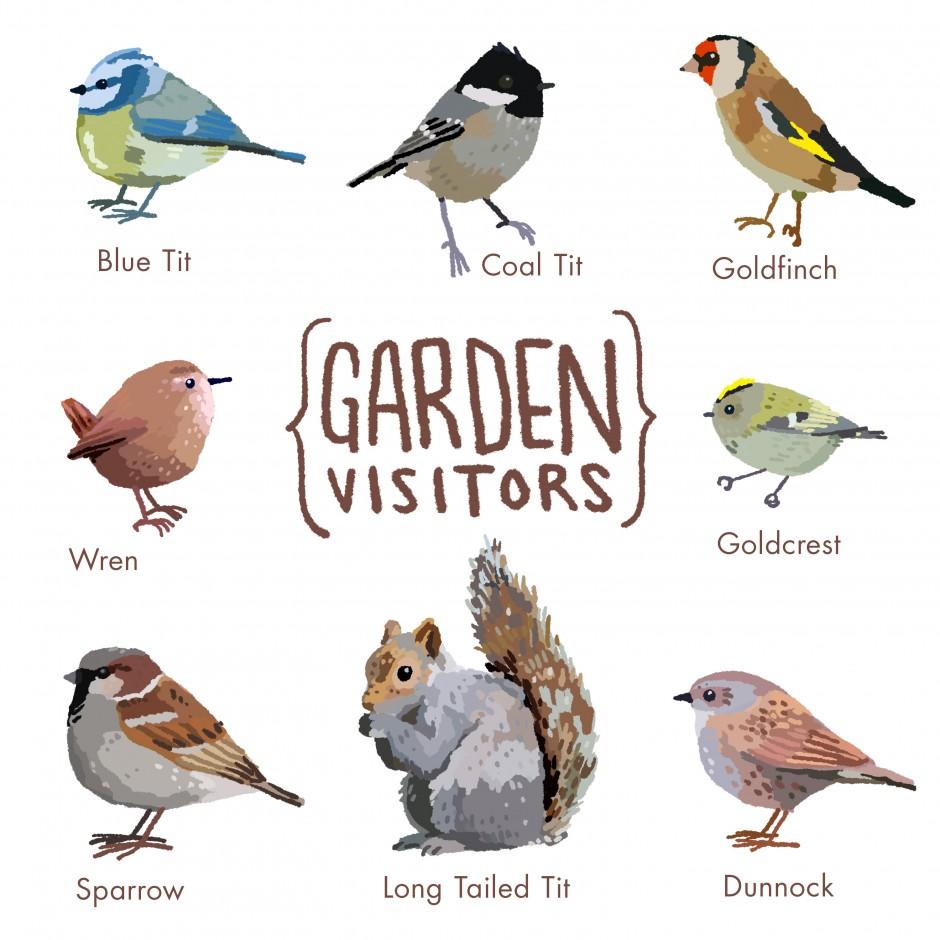 Garden-Visitors